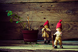 Nastaska i Makarka pomogali mne uchitsia stavit estestvennyi svet ot okna pri sieemke natiurmortov Vse fotografii v tom obzore sniaty na liubitelskuiu zerkalku Nikon D5100 KIT 18-55