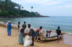 Nachalo otcheta v dvuh chastjah ob otdyhe v shtate Kerala na pljazhe Kovalam. Otchet ob jekskursijah po stolice – gorodu Trivandrum. Foto pljazha Samudra i Lile.