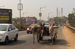 Tretij gorod, poseshhennyj Mihailom vo vremja jekskursij po Karnatake – Shrirangapatnam. Posmotrite foto ogromnoj statui s izvajaniem Gomateshvara. Vy tochno zahotite poehat' v Indiju.