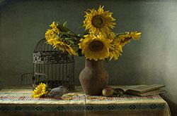 Obraztsy snimkov s eshche bolee staroi modeli Nikon D50 aprel 2005 pokazyvaiut chto masterstvo fotografa pervichno tekhnika vtorichna