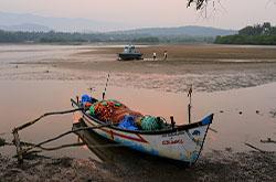 Eshche odin izvestnyi pliazh IUzhnogo Goa krome Palolema Agonda Fotografii s otdykha Rasskaz o progulke k mostu cherez reku Talpona Otzyv o fotookhote v dzhungliakh Indii