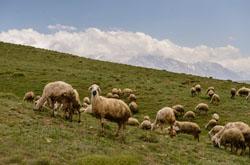Est li krasoty po puti v Antaliiu ZHivopisnyi gornyi massiv Aladaglar Kanon i figury v skale okolo goroda Kyzkalesi.