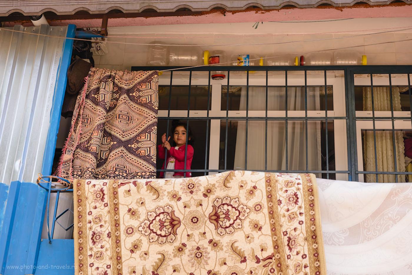Фотография 11. Жительница Стамбула. Отзывы туристов о поезде в Турцию самостоятельно. 1/125, 8.0, 200, 70.
