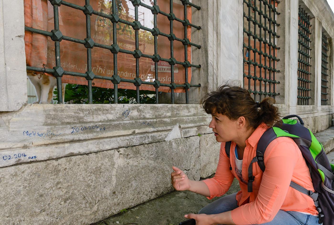 Фотография 22. Контакт с жителями Стамбула. 1/200, -0,67, 8.0, 800, 24.