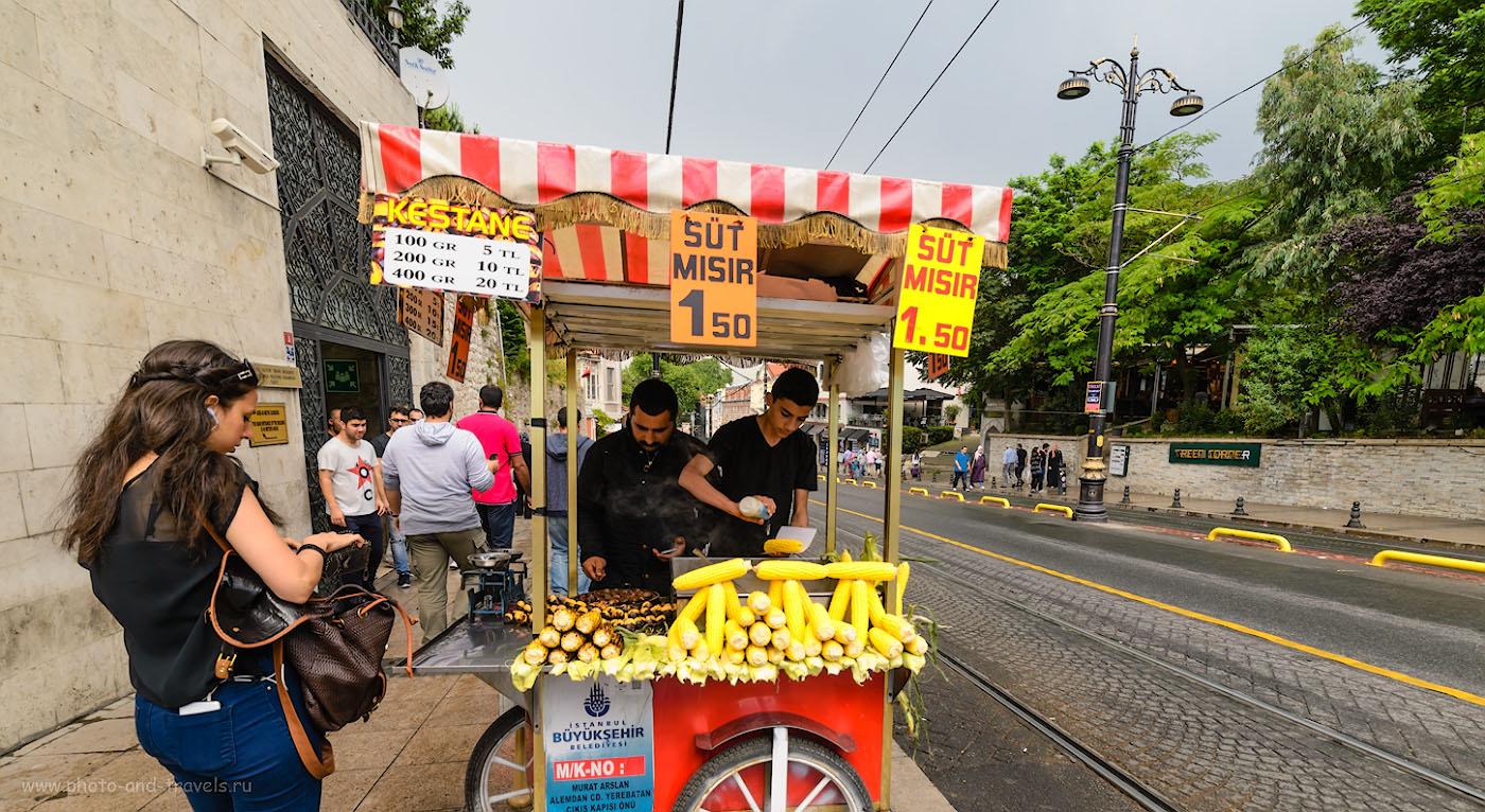 Фото 15. На улицах Стамбула туристы с голода не умрут. Отзывы туристов об экскурсиях за один день. 1/250, 5.6, 400, 14.