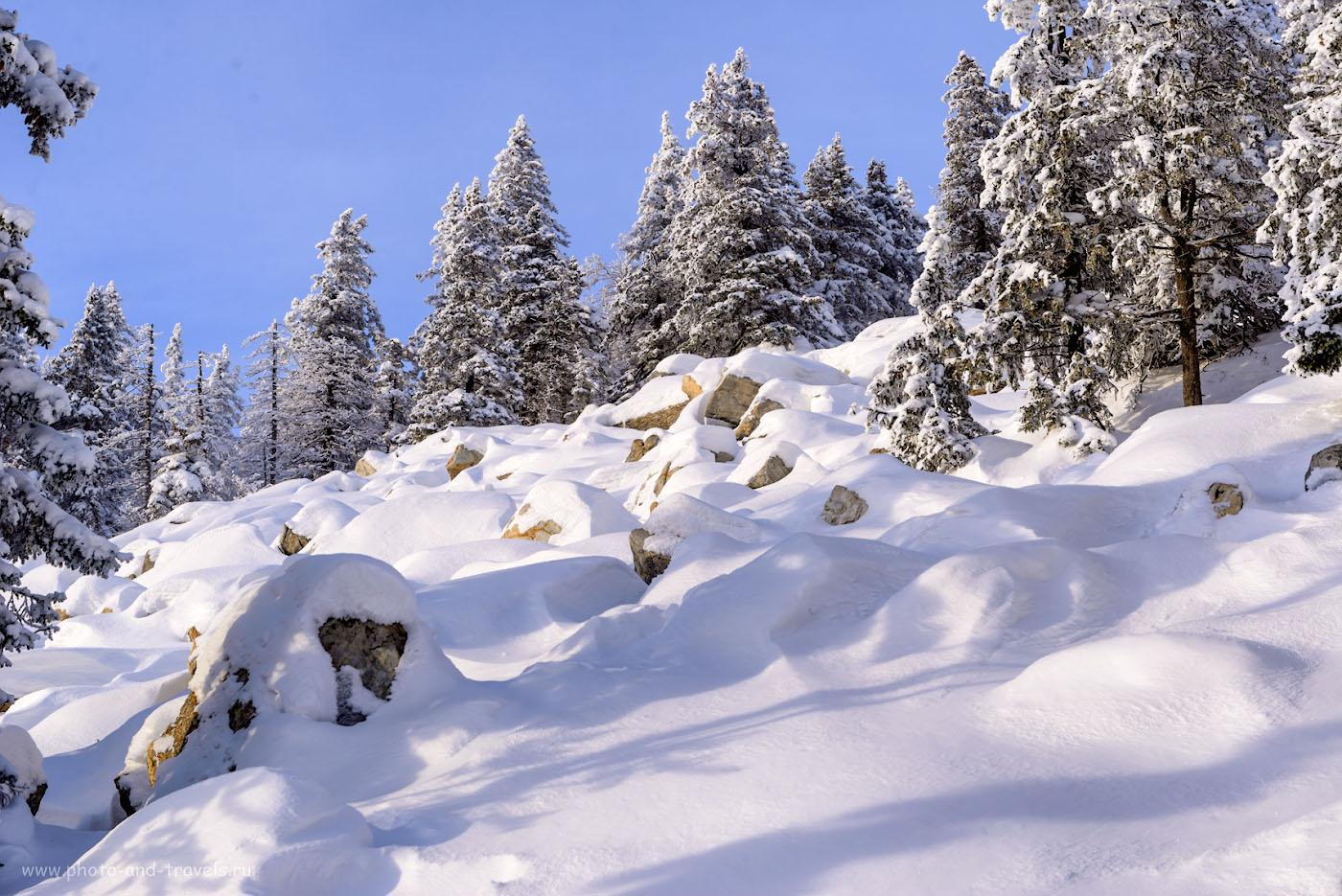 Фото 7. В зимнее время тайга на хребте Зюраткуль и Каменная река на его склонах совсем другие. 1/160, 0.67, 9.0, 125, 60.