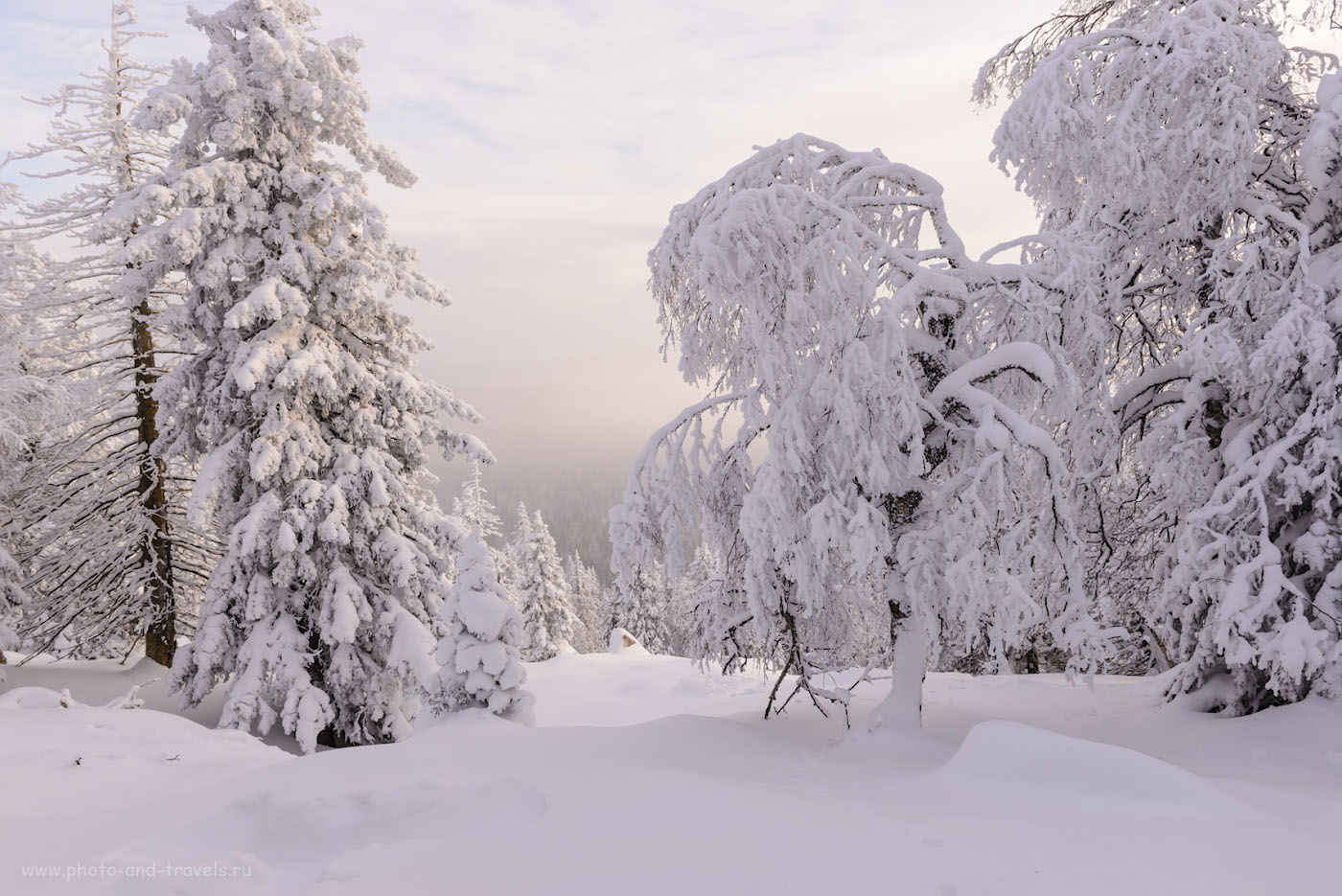 Фото 9. Зима в национальном парке Зюраткуль. 1/160, +0.67, 9.0, 220, 24.