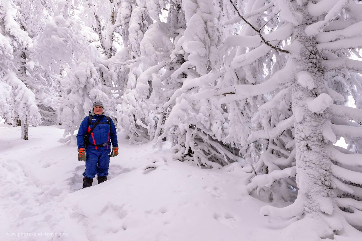 Фотография 10. Стоит ли ехать в национальный парк Зюраткуль зимой? За такими кадрами - думаю да! 1/160, +0.67, 9.0, 1250, 24.