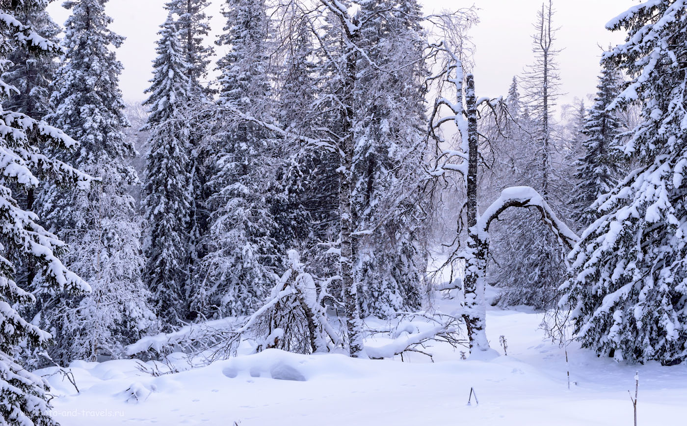 Фото 25. Пейзажи в горах Челябинской области. 1/160, +0.67, 9.0, 800, 52.