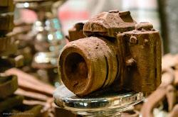 Podrobnyj analiz, chto daet fotografu obladanie svetosil'noj optikoj. Foto, poluchennye na polnyj kadr Nikon D610 pri vysokom ISO
