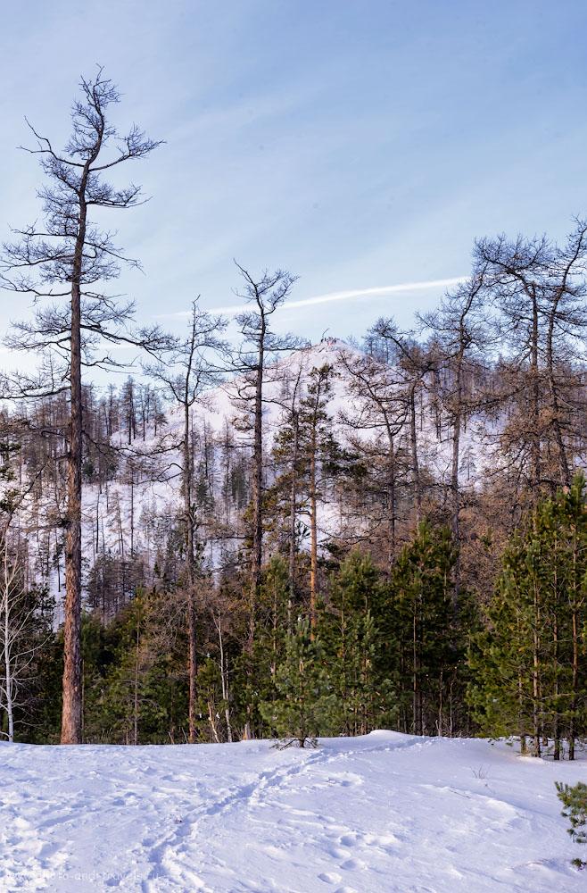 Фотография 7. Пойдем с нами на Сугомак! Там зимой не одиноко. 1/160, 0.33, 13.0, 640, 70.