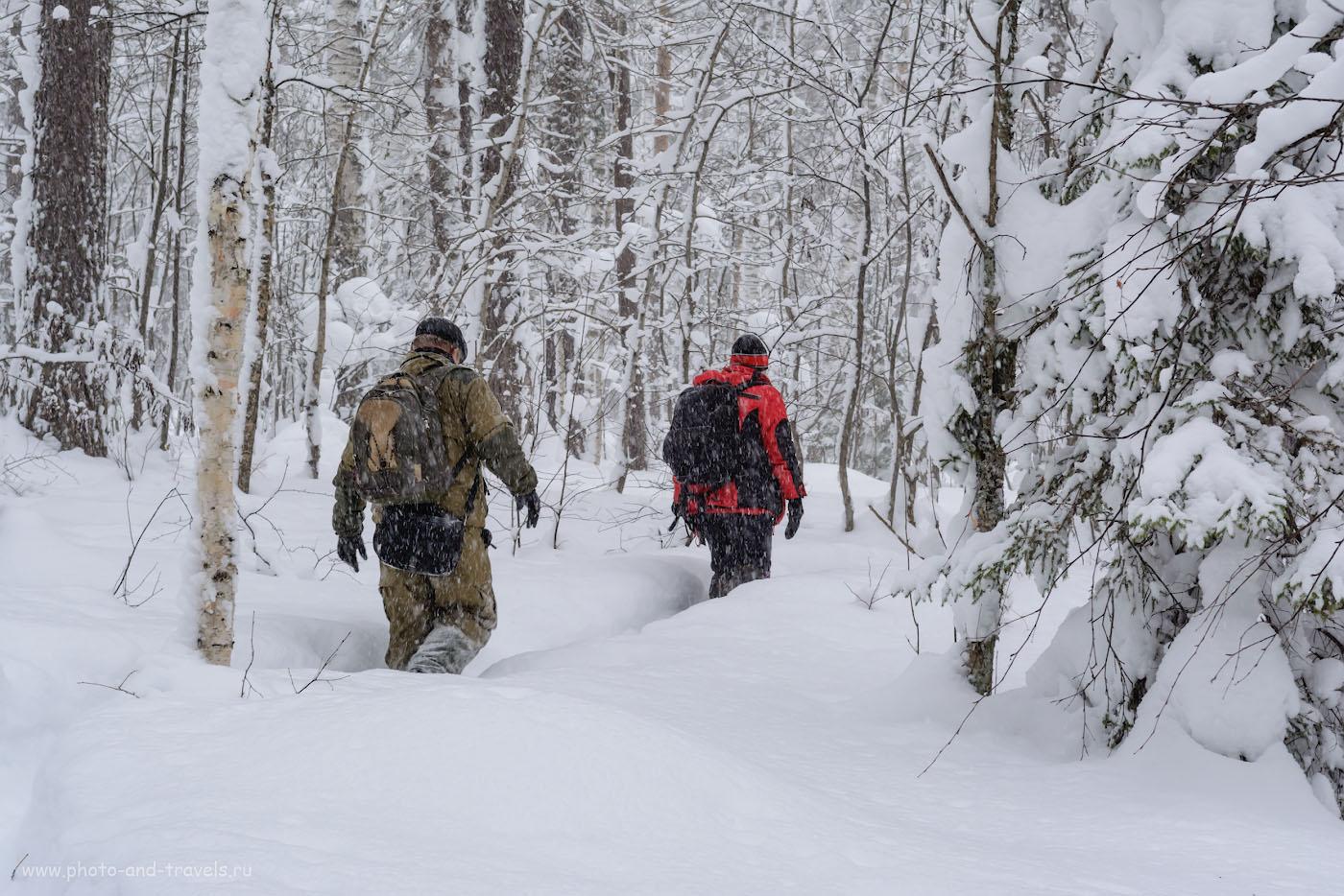 Фотография 8. Тестирование погодозащищенности объектива Nikon 17-55mm f/2.8 в условиях зимней метели в уральской тайге. 1/100, 9.0, 400, 50.