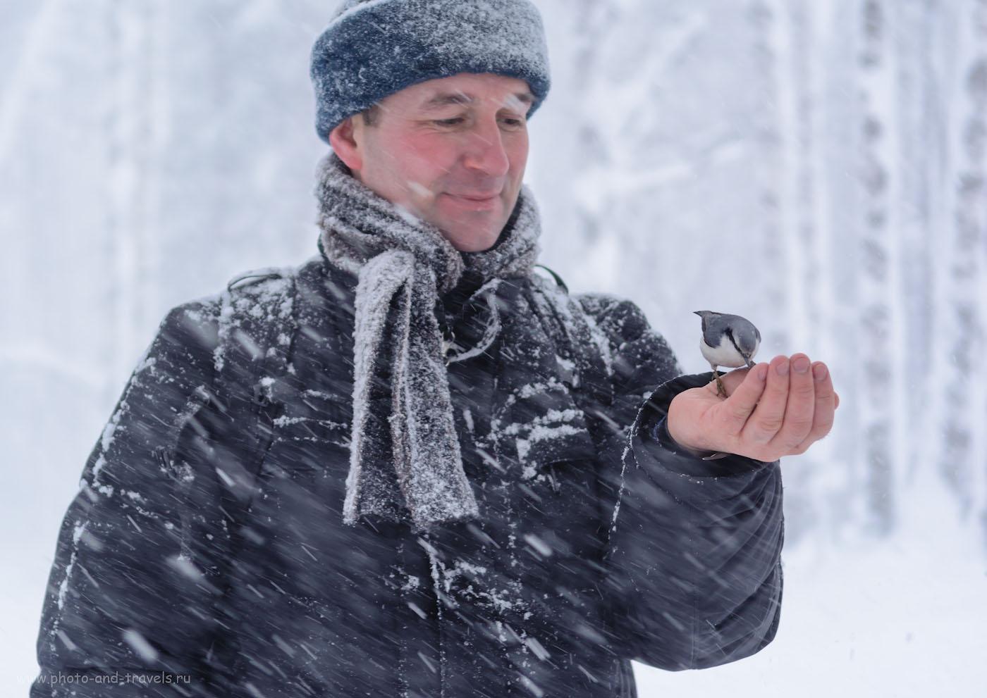 Фото 1. Ливневый снег мешал нам делать обзор объектива Nikon 17-55mm f/2.8 на тушке Nikon D5200 и сравнивать картинку с другими линзами. Настройки: выдержка 1/100 сек., экспокоррекция +0,67EV, диафрагма f/2.8, ISO 220, фокусное расстояние 50 мм.