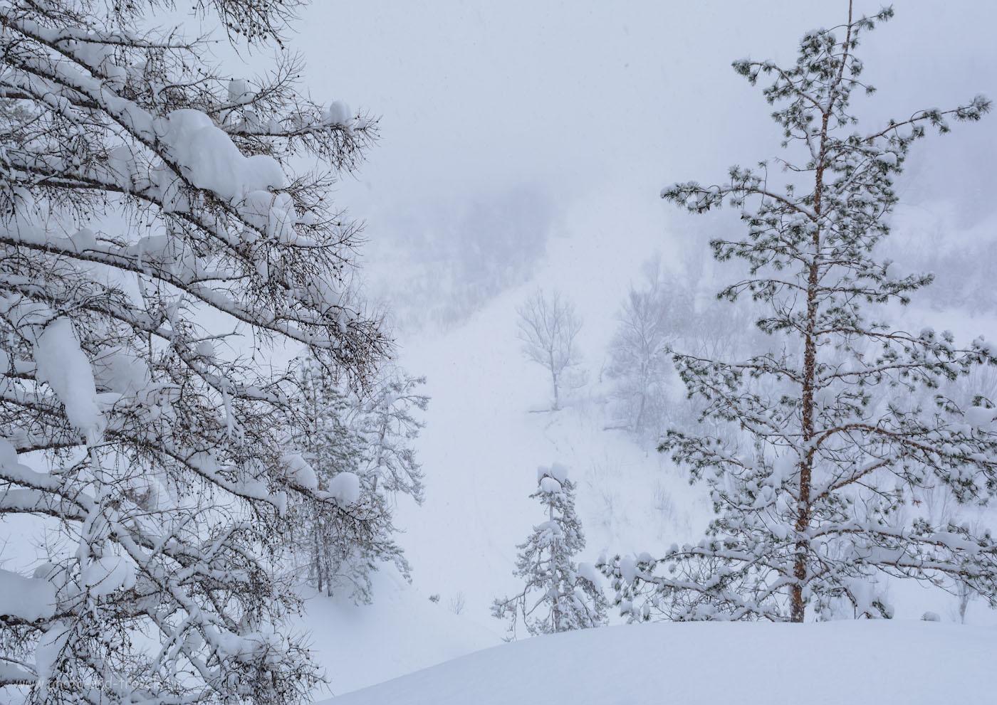 Фото 11. Пейзажи на Урале почти как у Джека Лондона. Съемка на Никон Д5200 + Никон 17-55/2,8. Использованы следующие параметры: 1/100, +0.67, 11.0, 500, 17.
