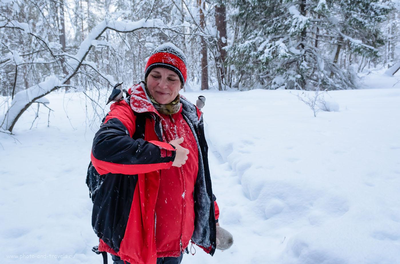 Фотография 29. Лесной генерал. Портреты на кропнутую зеркалку Nikon D5200 с объективом Nikon 17-55mm f/2.8. 1/100, +0.33, 6.3, 1250, 17.
