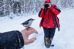 Kakoe kachestvo kartinki poluchaetsia esli na kameru Nikon D5200 natsepit professionalnyi svetosilnyi zum-obieektiv Nikon 17-55mm f 2 8G Testirovanie zimoi