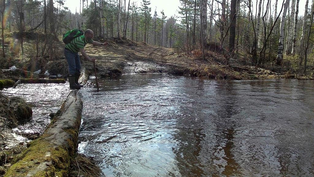 Фото 2. Ручей в 200 метрах от Кырманских скал. Ранней весной он превращается в полноводную реку. Снято на смартфон.