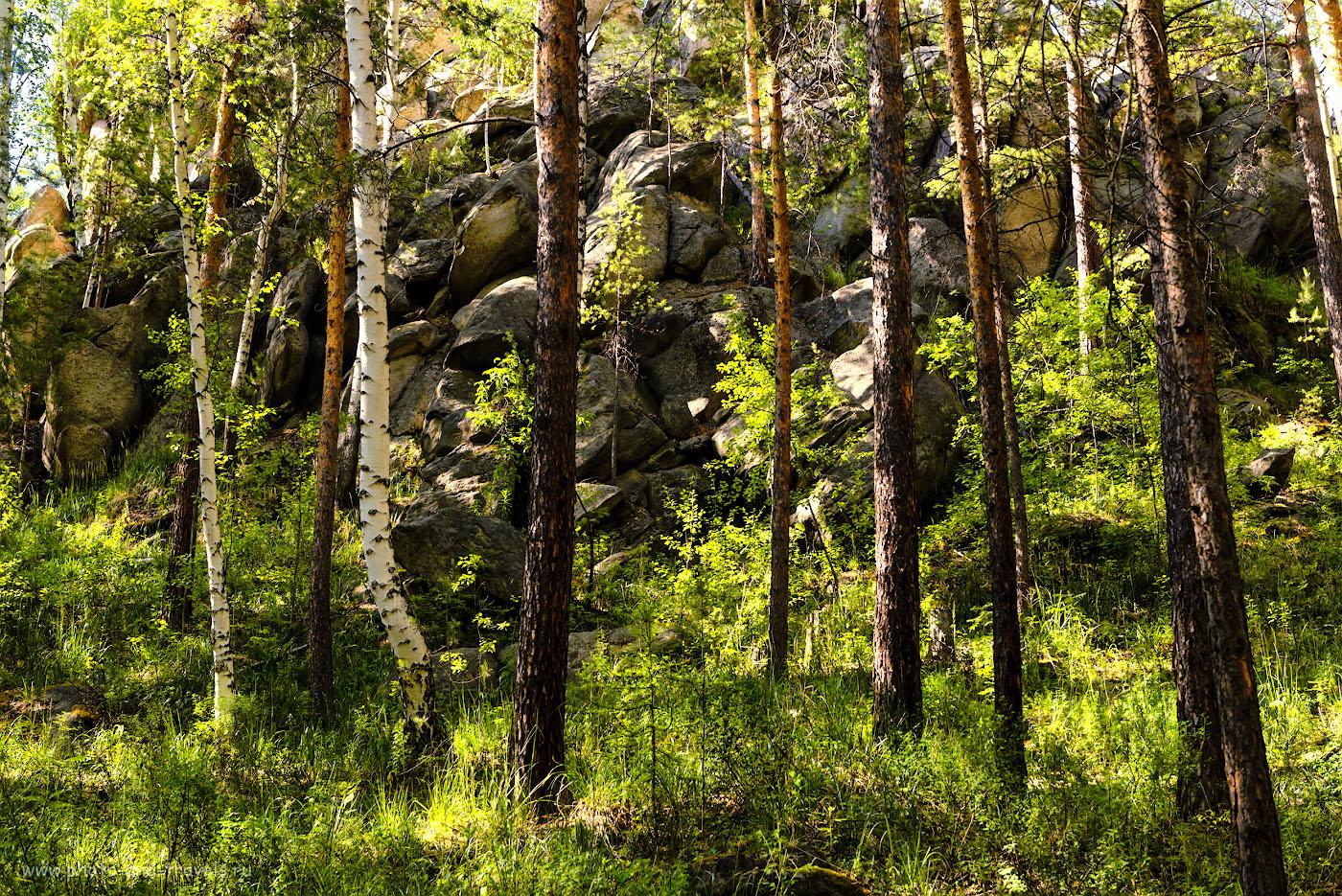 Фотография 26. Кырманские скалы. 1/100, -1.33, 8.0, 400, 48.