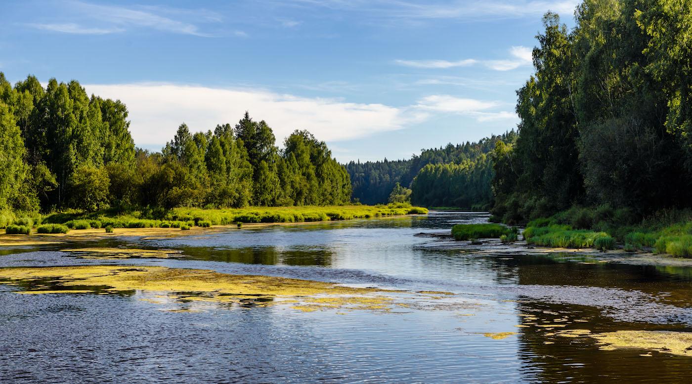 Фотография 11. Река Чусовая летом.
