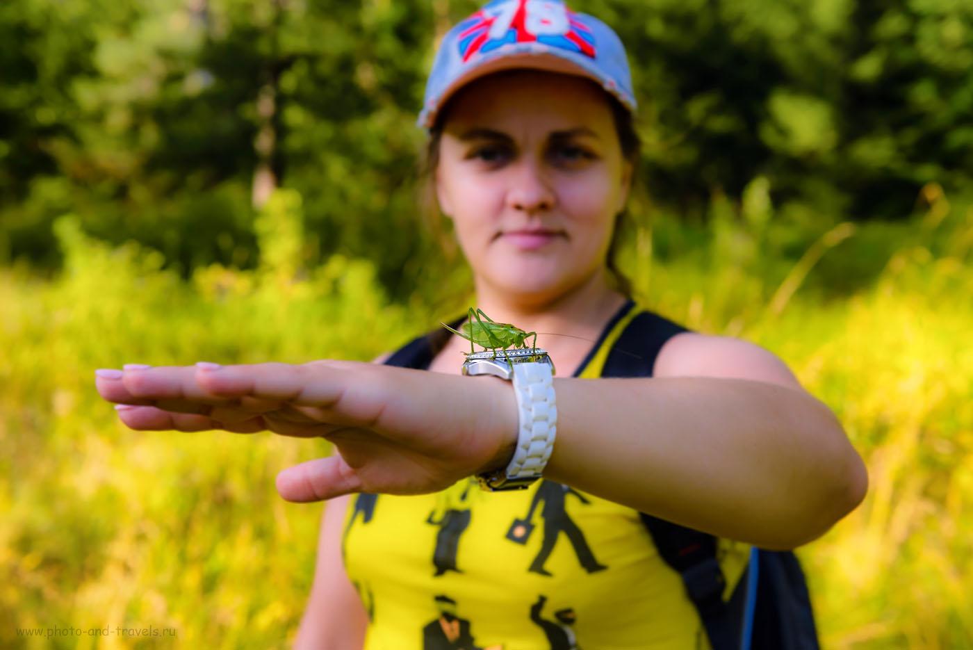 Снимок 25. Фотосессия с зеленым кузнечиком во время ПВД по скалам села Слобода.