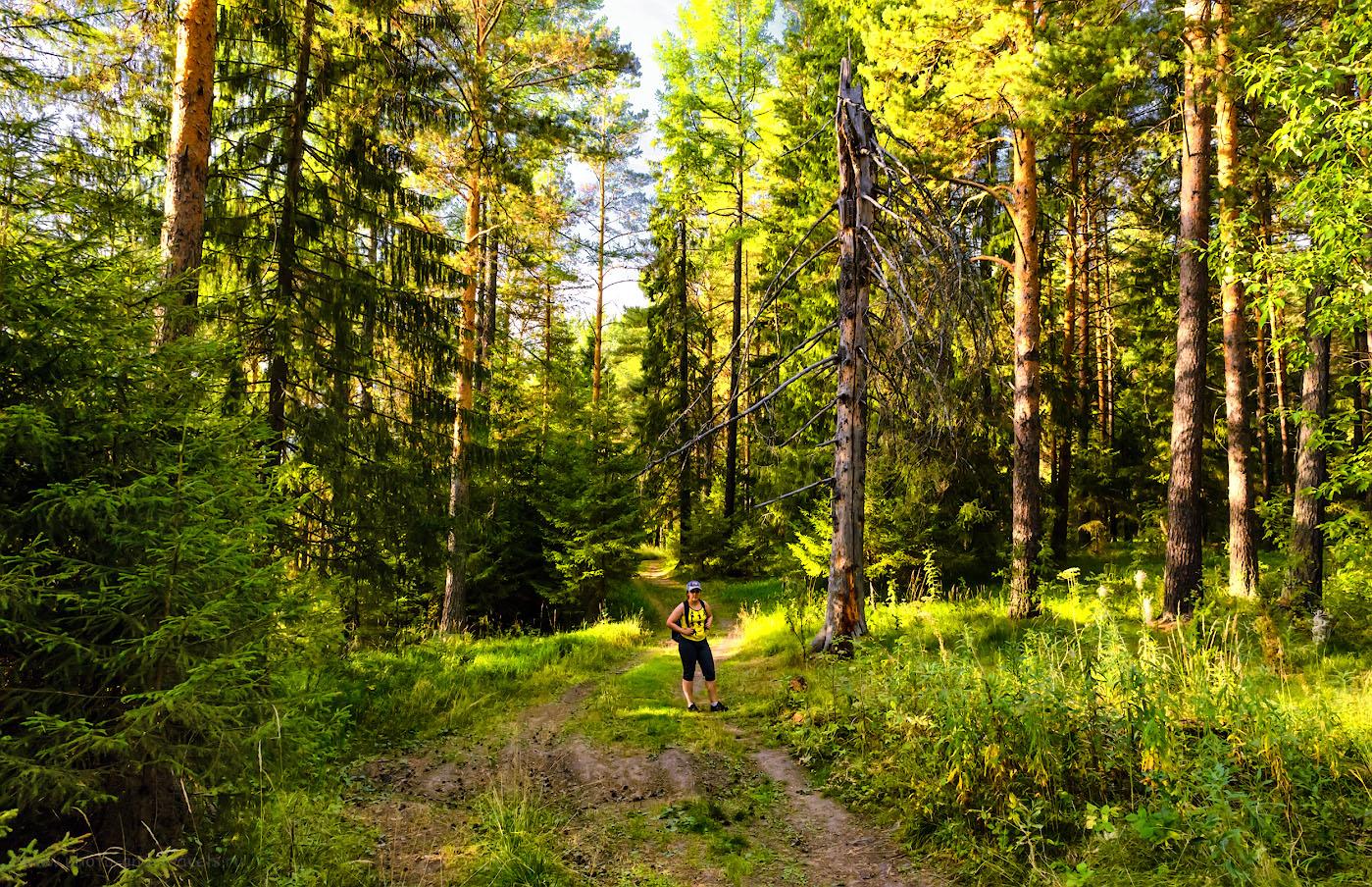 Снимок 26. В лесу на маршруте вдоль скал реки Чусовая.