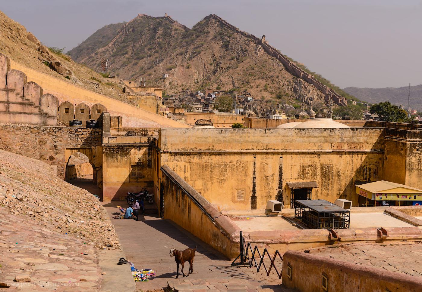 Фотография 4. Крепость Амер расположена в очень живописном месте. Отзывы туристов об экскурсиях в Джайпуре. 1/400, 8.0, 100, 50.