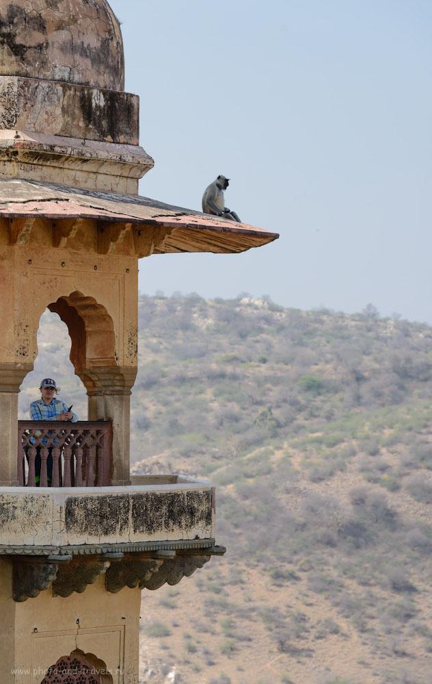 Снимок 22. Туристка и местный житель на башне крепости Джайгарх. Отзывы о самостоятельных экскурсиях в Индии. Фотоаппарат Nikon D610, объектив Nikon 70-200mm f/2.8. Настройки: 1/320, -0.33, 6.3, 110, 150.