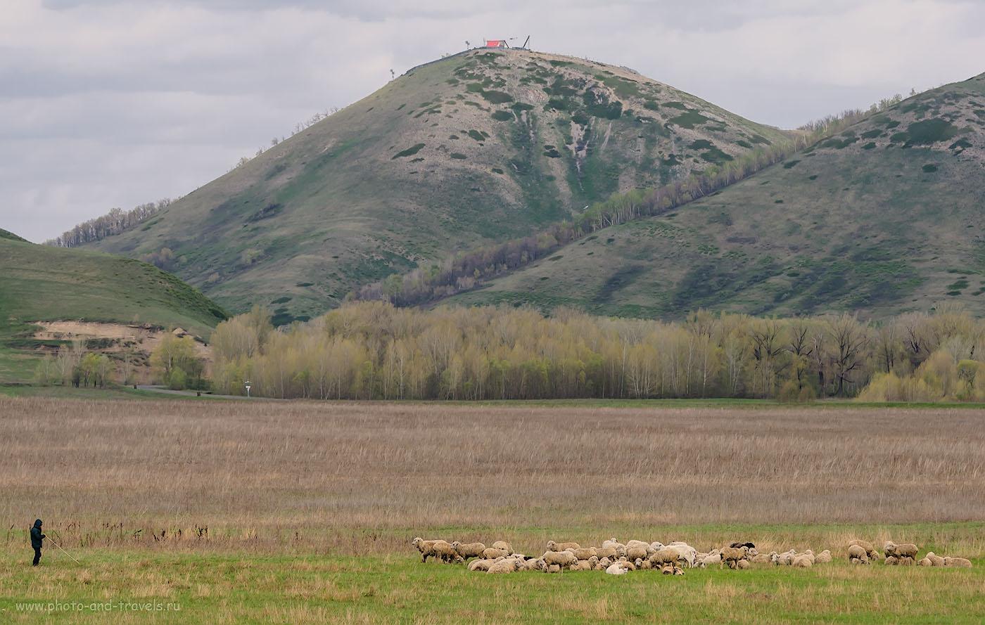 Фотография 12. Типичный пейзаж, который мы наблюдали, путешествуя по Башкортостану на авто. 1/200, -0.67, 8.0, 100, 135.