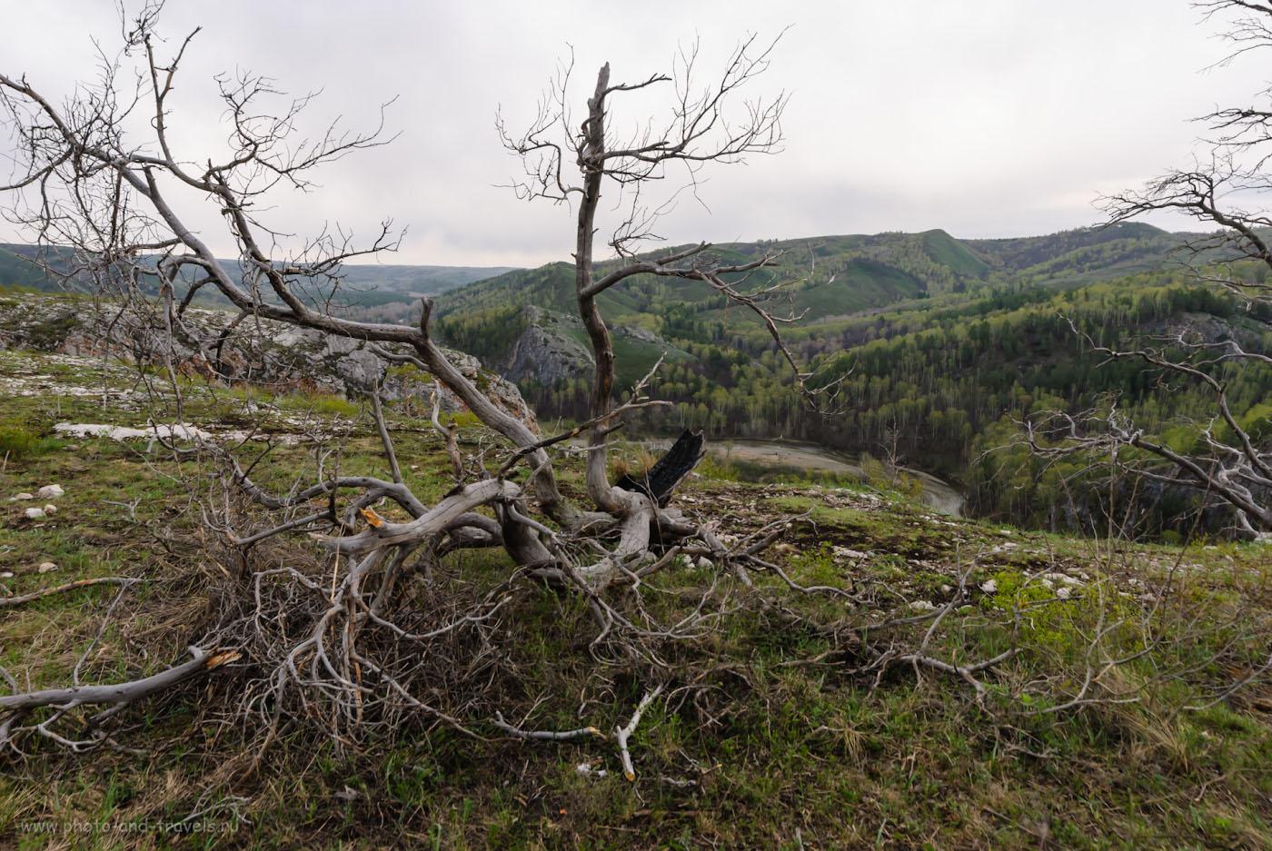 Снимок 24. На верхней балке Мурадымовского ущелья (точка «С» на карте маршрута). Отчеты об отдыхе в Башкирии. 1/30, -2.33, 8.0, 100, 14.