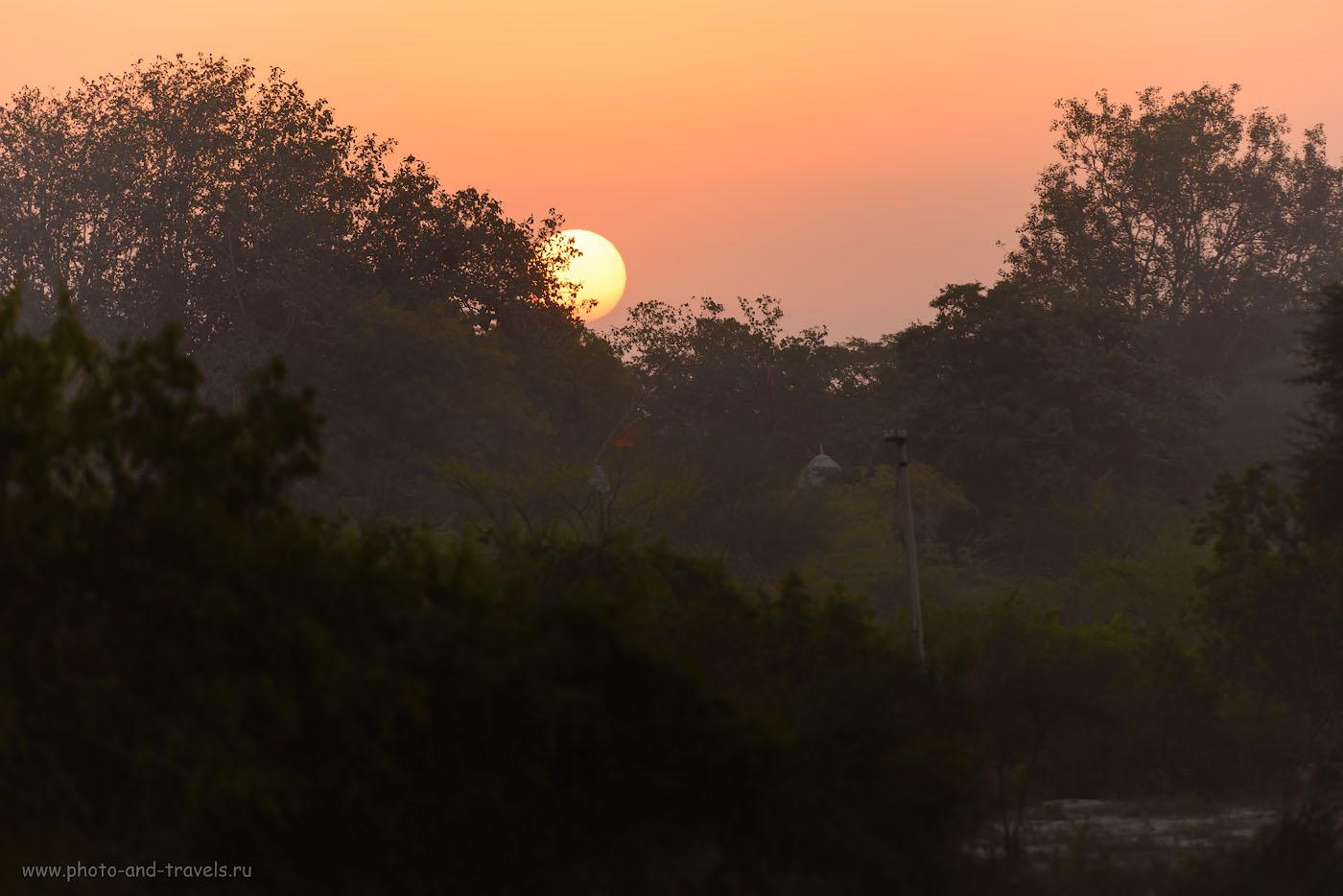 Фотография 2. На фоне этого солнца должно стоять дерево с аистами, а не фонарный столб и какая-то лачуга. 1/250, -0.67, 4.0, 125, 280.