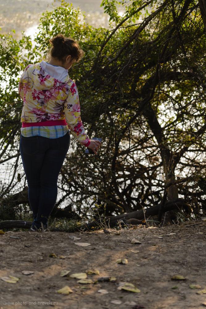 20. Фотоохота на белогрудого погоныша с использованием смартфона Asus Zenfone 6. 1/400, 4.0, 360, 100.