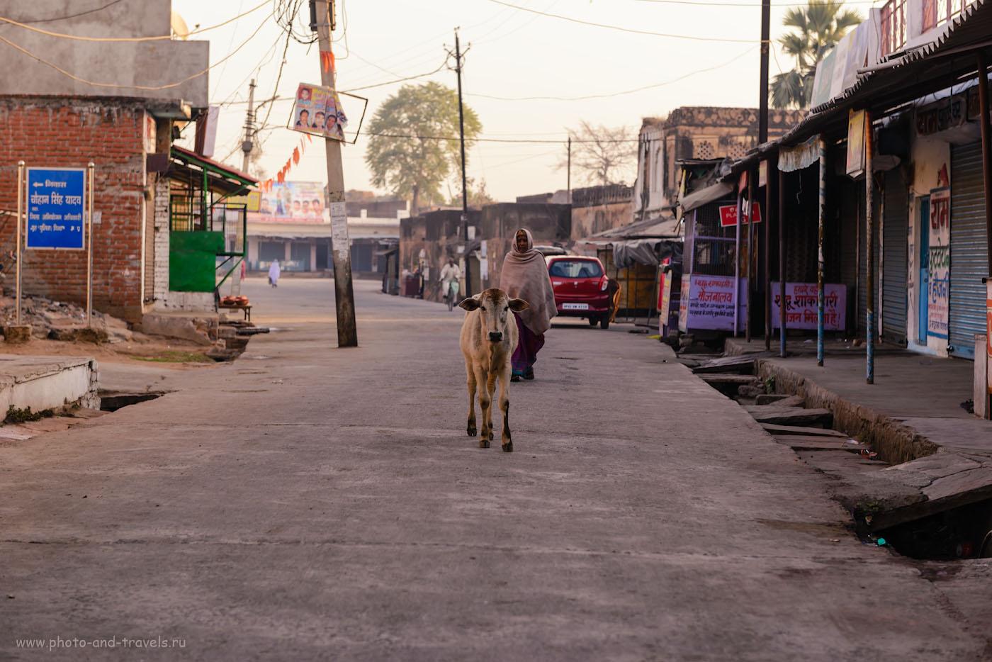 Фото 1. Утро в Орчхе. Отчеты туристов о путешествии по Индии самостоятельно. Фотоаппарат Nikon D610, объектив Nikon 24-70mm f/2,8. Параметры съемки: выдержка 1/200, экспокоррекция -0.67EV, f/4.5, ISO 100, ФР=70 мм.