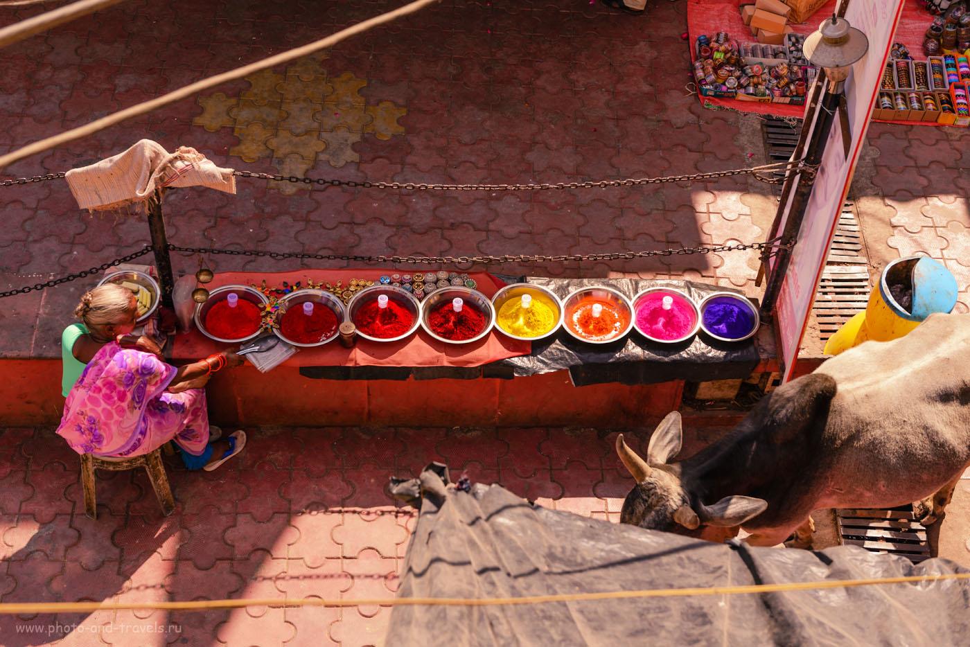 """Фото 1. Вид с террасы нашего гестхауса """"ShriMahantGuest House Orchha"""" в Орчхе. Отзывы о самостоятельной поездке в Индию. Камера Nikon D610, объектив Nikon 24-70mm f/2.8G. Настройки: выдержка 1/500 сек., экспокоррекция +0.33EV, ISO 100, фокусное расстояние 50 мм."""