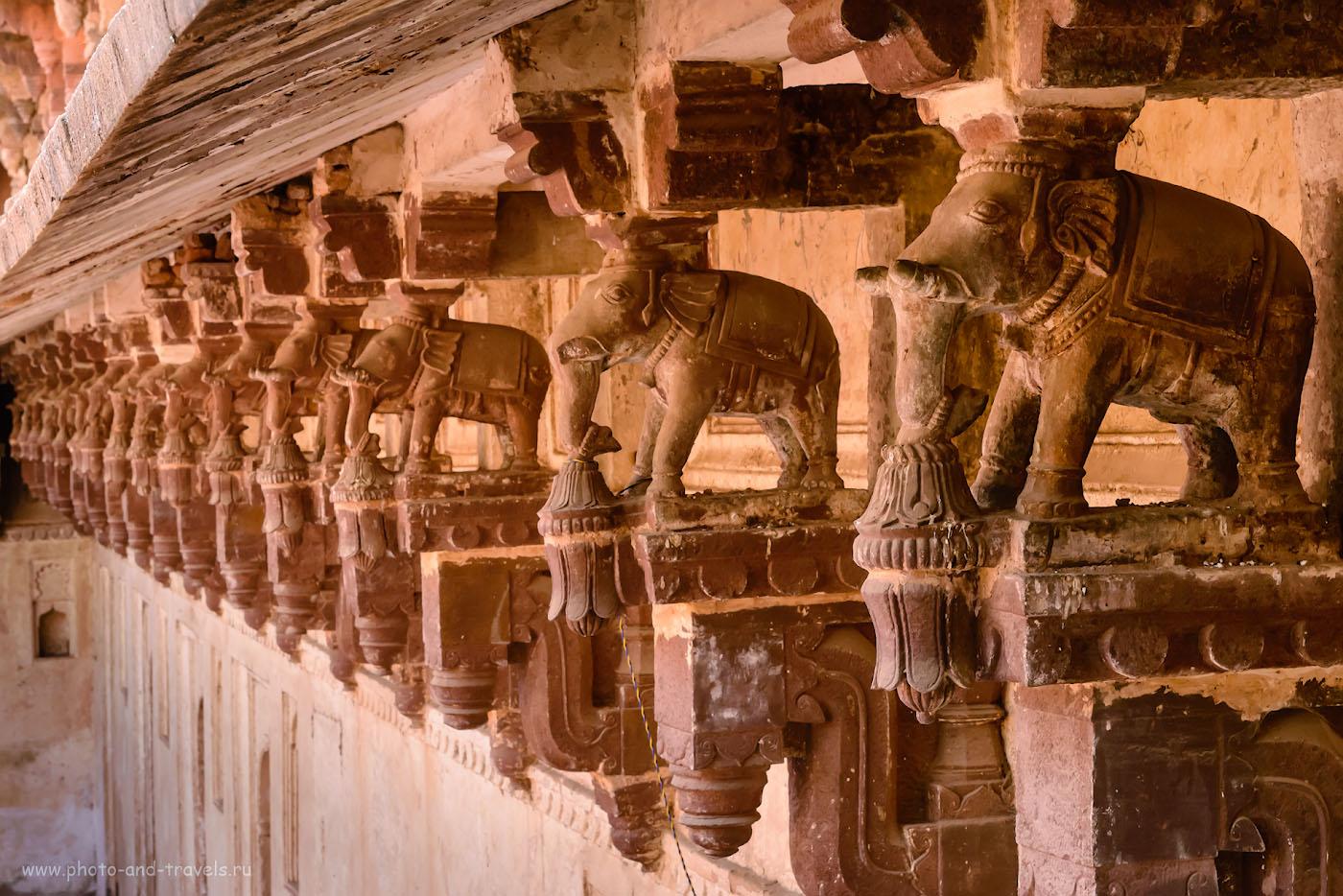 Фото 4. Сколько же работы требовалось проделать индийским мастерам! Скульптуры во дворце Орчхи.