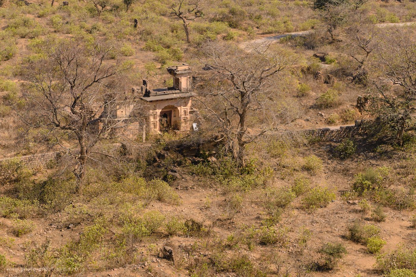 Фотография 10. Развалины в саду дворца Джахангир-Махал. Отчет о самостоятельной поездке в Индию.