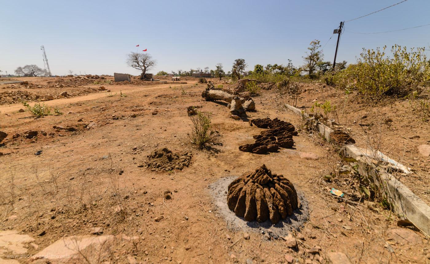 Фотография 22. Сушка кизяка в индийских деревнях - обычное дело.