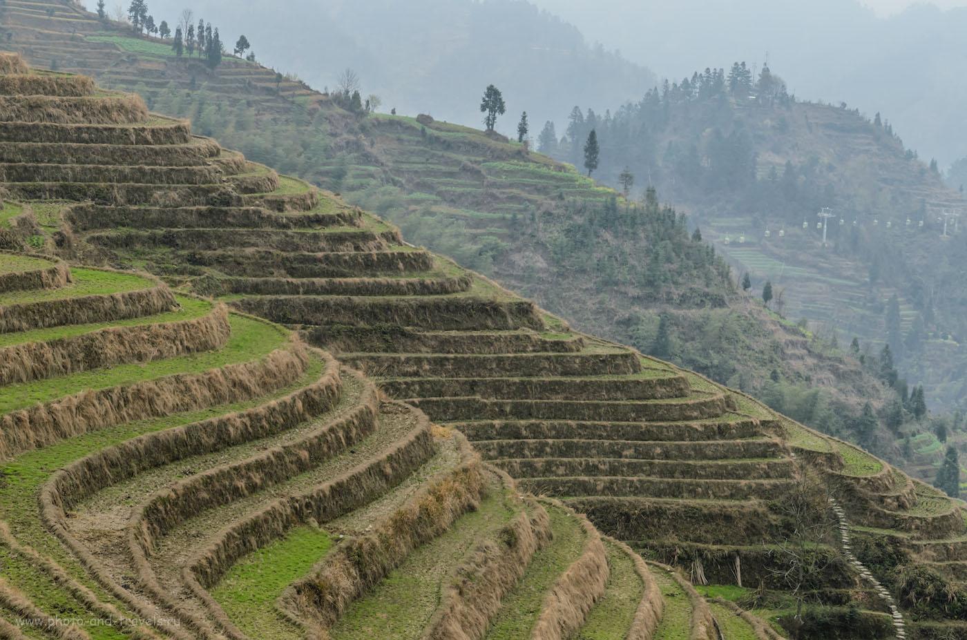 Фото 5. Экскурсионные туры в Китай самостоятельно. Вдалеке видна вновьпостроенная канатная дорога на рисовых террасах Лонгшэнь