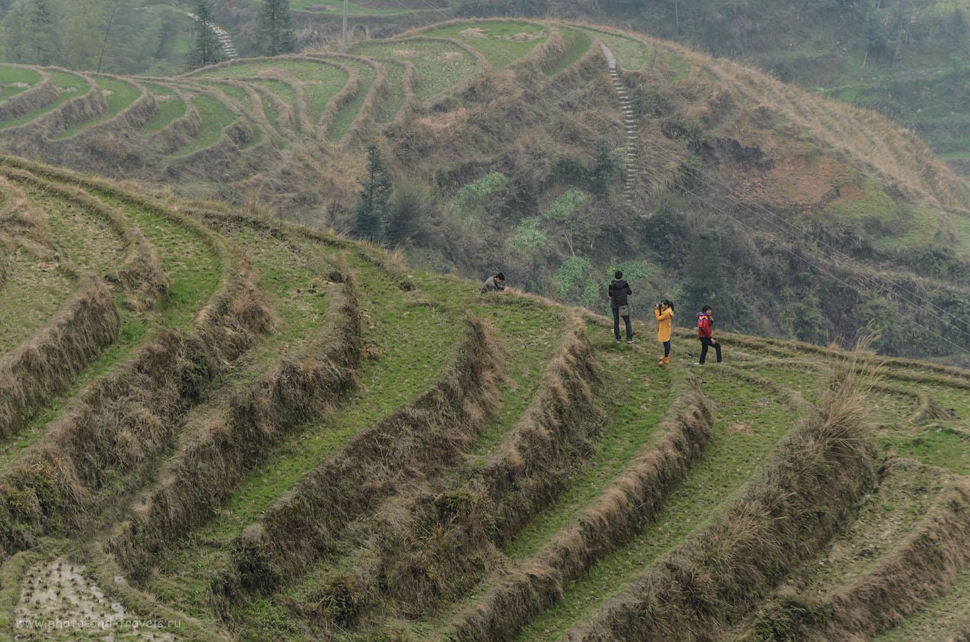 Фото 6. Отдых в Китае. Отзывы о самостоятельном путешествии. Телеобъектив сжимает пространство. Туристы на соседней горе. Рисовые террасы Лонгшэнь