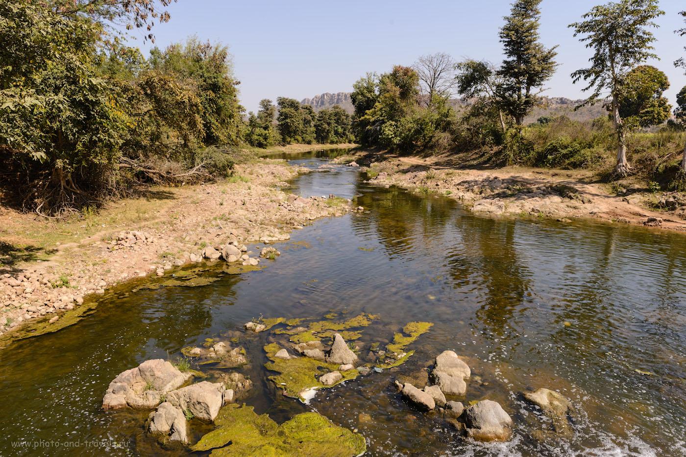 Фотография 23. Выглядит эта речка Khudar River терпимо. Но знали бы вы, какая там вонь стоит! Отзыв о велопоходе по окрестностям Кхаджурахо. 1/160, 9.0, 100, 24.
