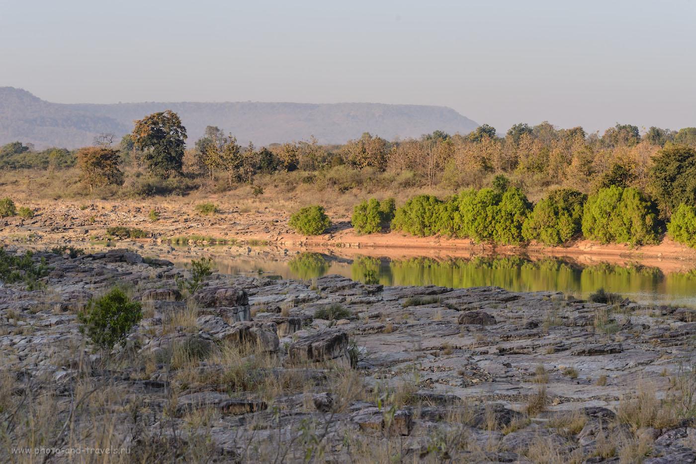 Фото 9. В ожидании тигра на берегу реки Кен в заповеднике «Панна» (Panna Tiger Reserve). Отзывы об экскурсиях в Кхаджурахо. 1/250, 10.0, 500, 112.