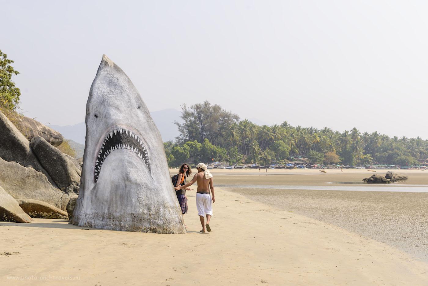 Фотография 13. Индия. Гоа. Пляж Палолем. Отзыв об отдыхе в марте. 1/250, 0.67, 8.0, 100, 48.