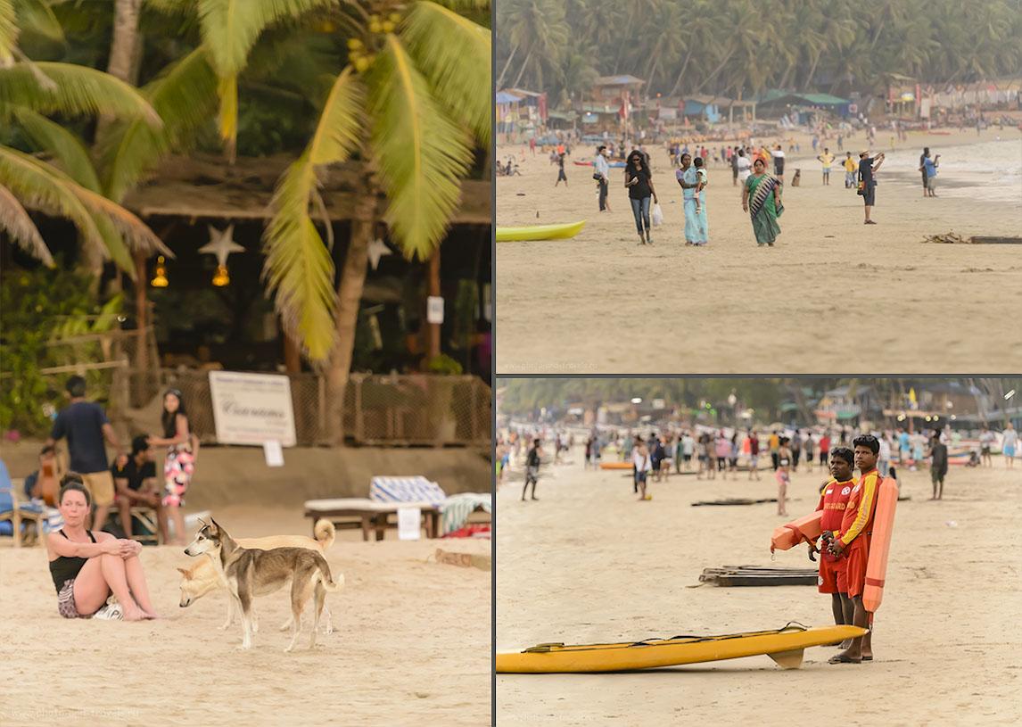 Фото 27. Особой антисанитарии на пляже Палолем в Южном Гоа мы не заметили: собаки были, но не такие лишайные, как в Таиланде или Шри-Ланке.