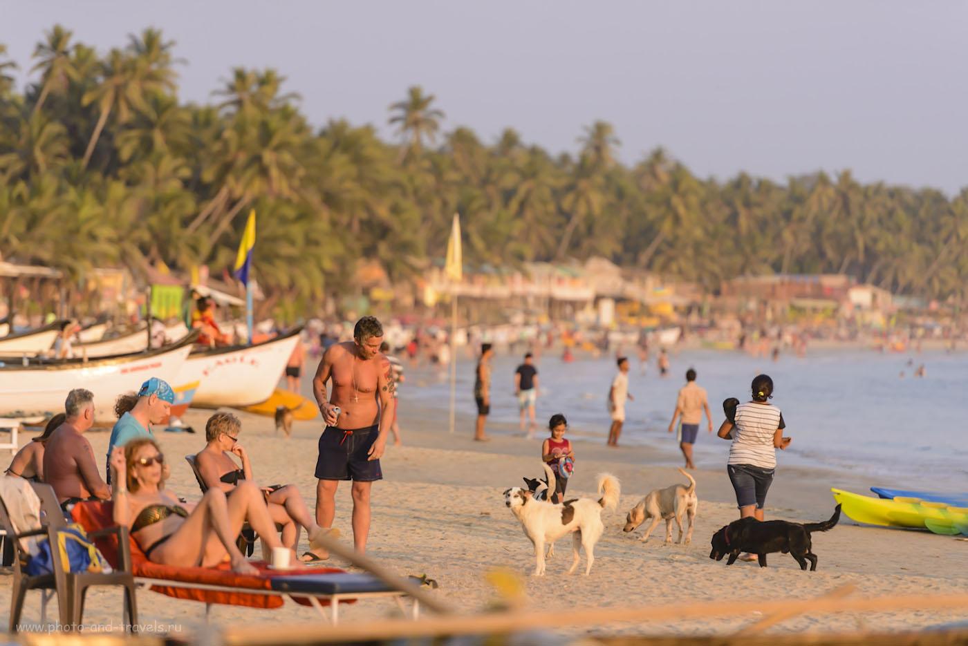 Снимок 35. Отдых на Гоа удобен тем, что на пляж можно выйти прямо из своего бунгало на берегу. 1/1600, 2.8, 560, 200.