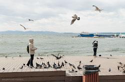 Poezdka na vostochnuiu konechnost Rossii Progulka po Nakhodke i Vladivostoku s mylnitsei Fujifilm X30.