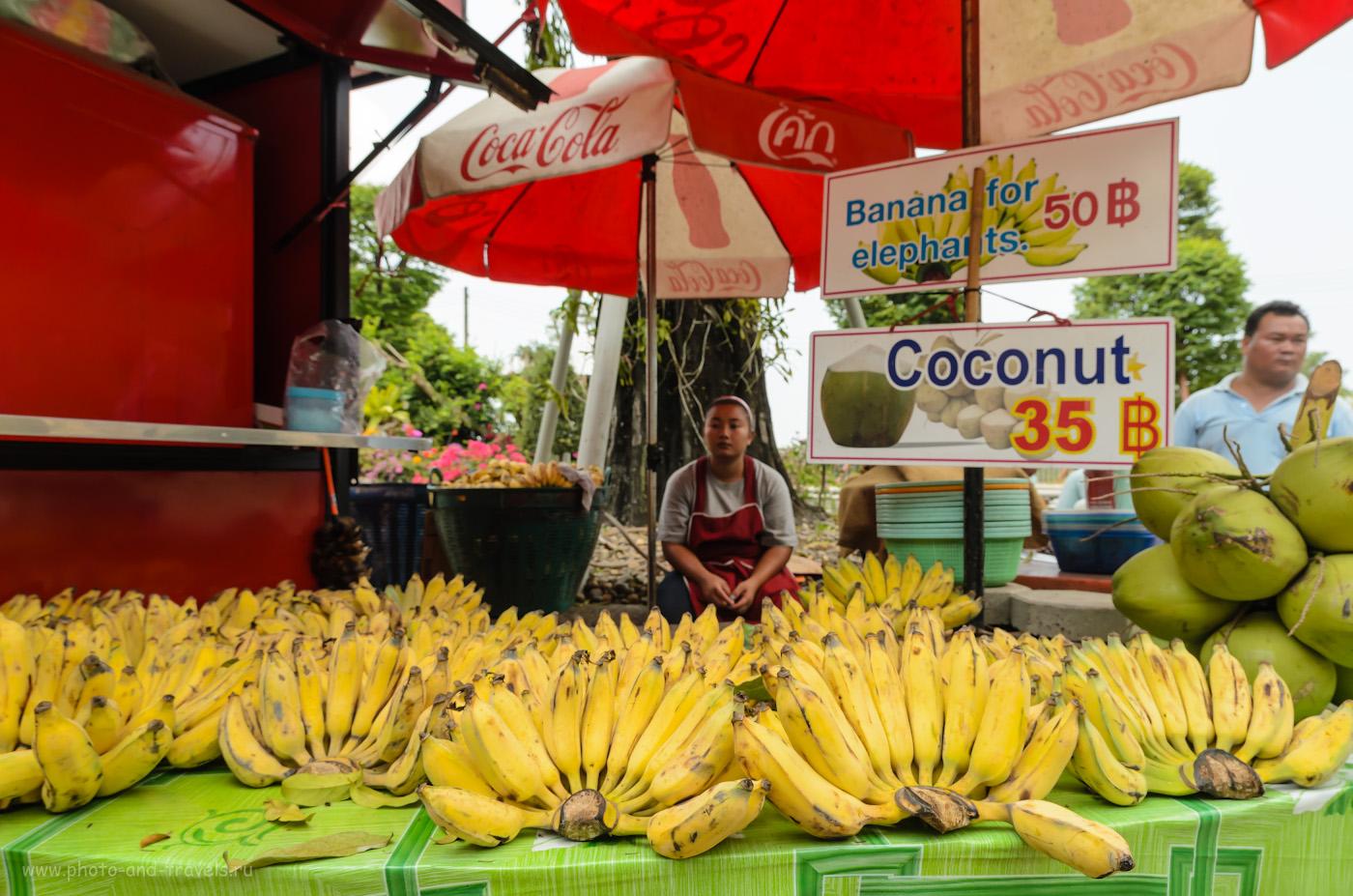 Фотография 15. Бананы для кормления слонов в парке Миллионолетних камней в Паттайе. Отзыв об отдыхе в Таиланде. 1/640, 5.6, 320, 14.