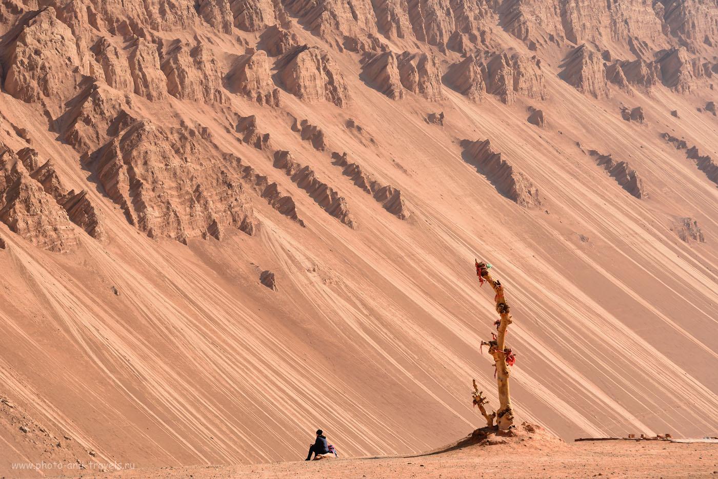 Фото 8. Катя и анчар в горах Богдо-Ула в пустыне Такла-Макан. Отчет о путешествии по окрестностям Урумчи в Китае. 1/320, +1.0, 8.0, 400, 140.