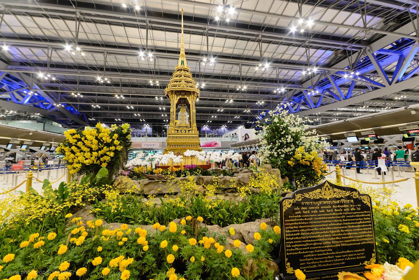 Фото 23. Нарядные клумбы в аэропорту Суварнабхуми (Suvarnabhumi Airport (BKK)) в Бангкоке. Так мы завершили путешествие по Китаю и Таиланду в октябре 2017 года. Камера Nikon D610, широкоугольный объектив Samyang 14mm f/2.8. Параметры съемки: 1/30, +0.33, 8.0, 1800, 14.