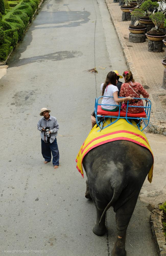 13. Пристрелить вас, что ле? В тропическом саду Нонг Нуч можно не только увидеть интересную растительность, но и покататься на слонах. Отзывы туристов об отдыхе в Паттайе - самом известном курорте Таиланда.