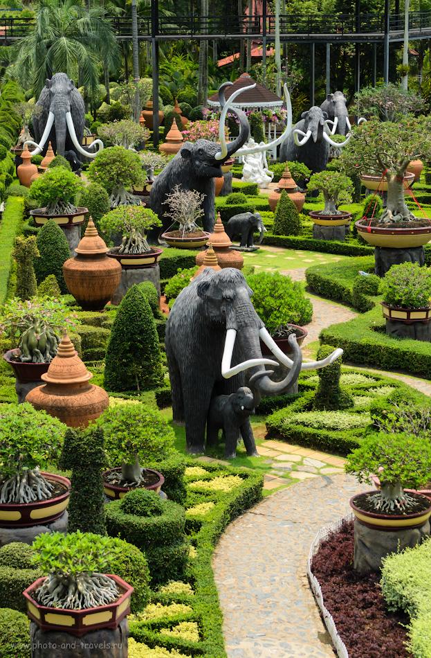 2. Мамонты в ботаническом саду Нонг Нуч. Отзывы туристов о самостоятельной экскурсии из Паттайи во время отдыха в Таиланде.