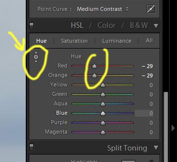 Рисунок 19. Инструмент Targeted Adjustment Tool в Лайтруме. Выбрав его и потянув на лице человека, задействуем изменение параметров цвета сразу в двух каналах: красный и оранжевый. При обработке листвы это будет желтый и зеленый.